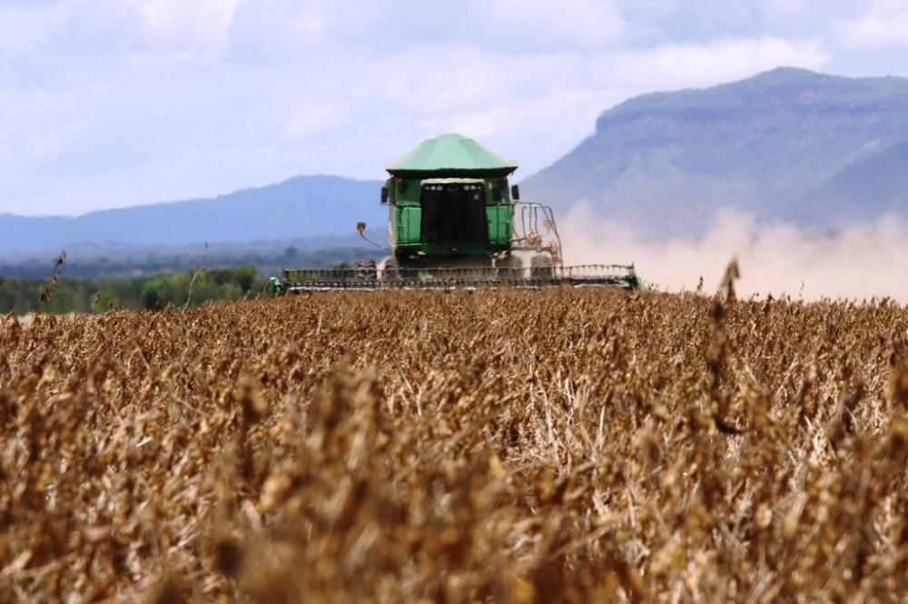 Produção de grãos no Tocantins deve crescer 36% nos próximos 10 anos